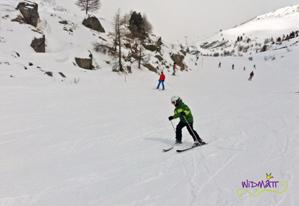 Skifahren grossi