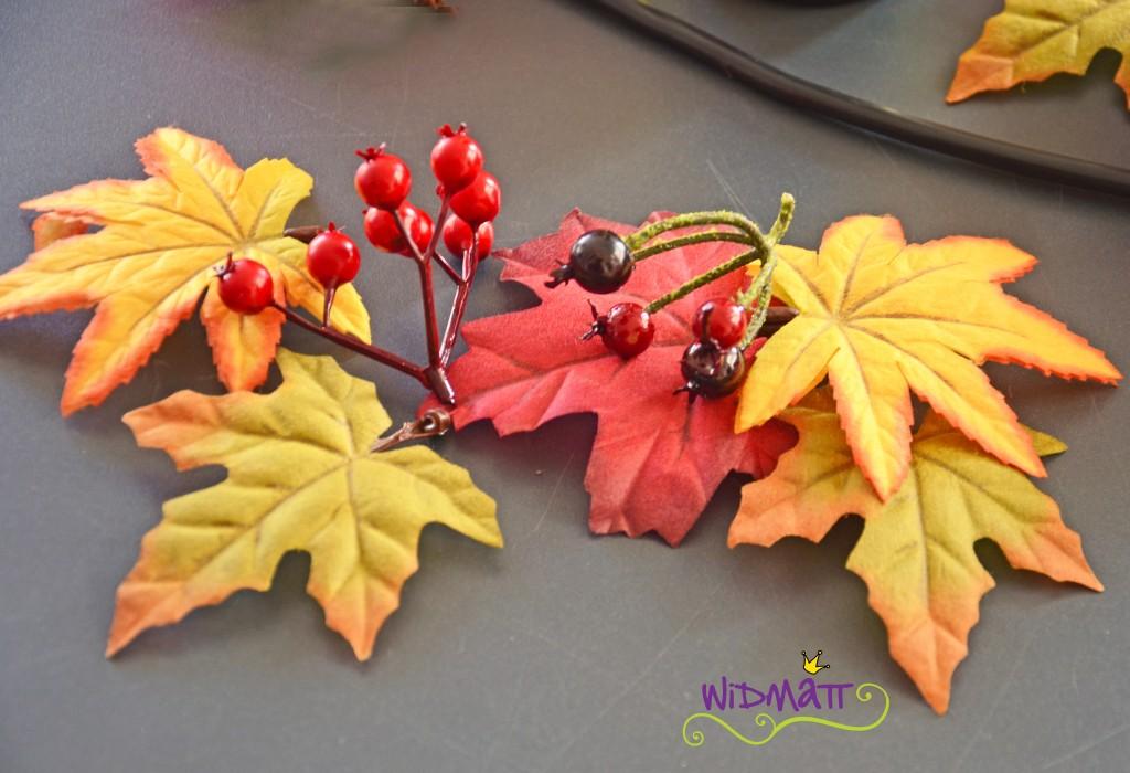 widmatt.ch Herbstblätter
